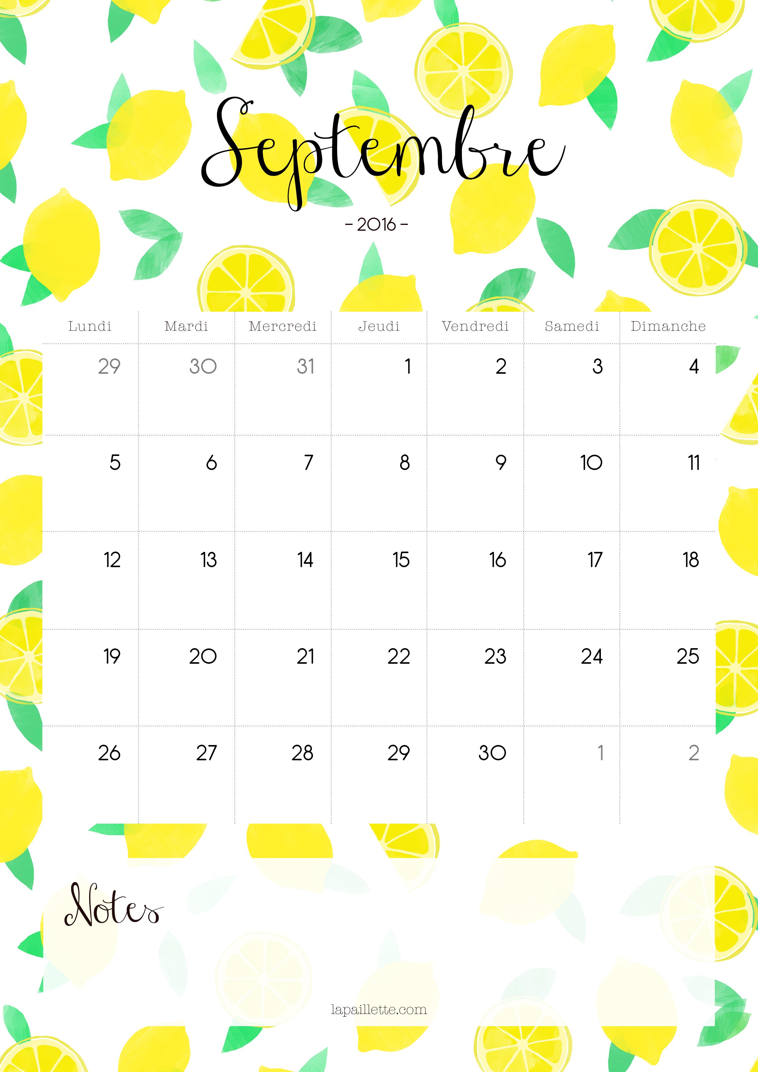 Claire la paillette blog rennes illustratrice calendrier citrons septembre portrait